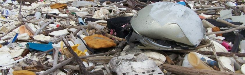 Mares de basura ahogan las costas de Omoa en Honduras Image