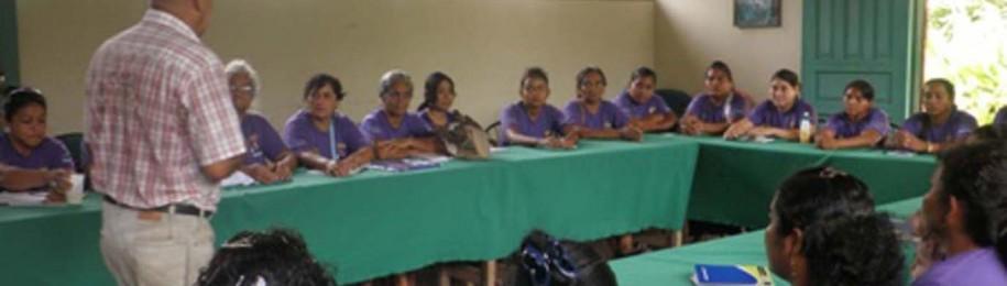 2014ko laburpenak: Honduras Image