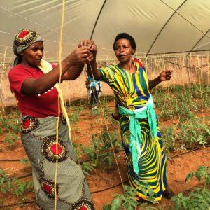 Viajamos a Ruanda para visitar proyectos y asociaciones locales